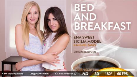 Virtualrealporn Bed and breakfast (30:50 min.)  Siterip VirtualReality XXX 60FPS 4100×2000 AAC Audio .mp4