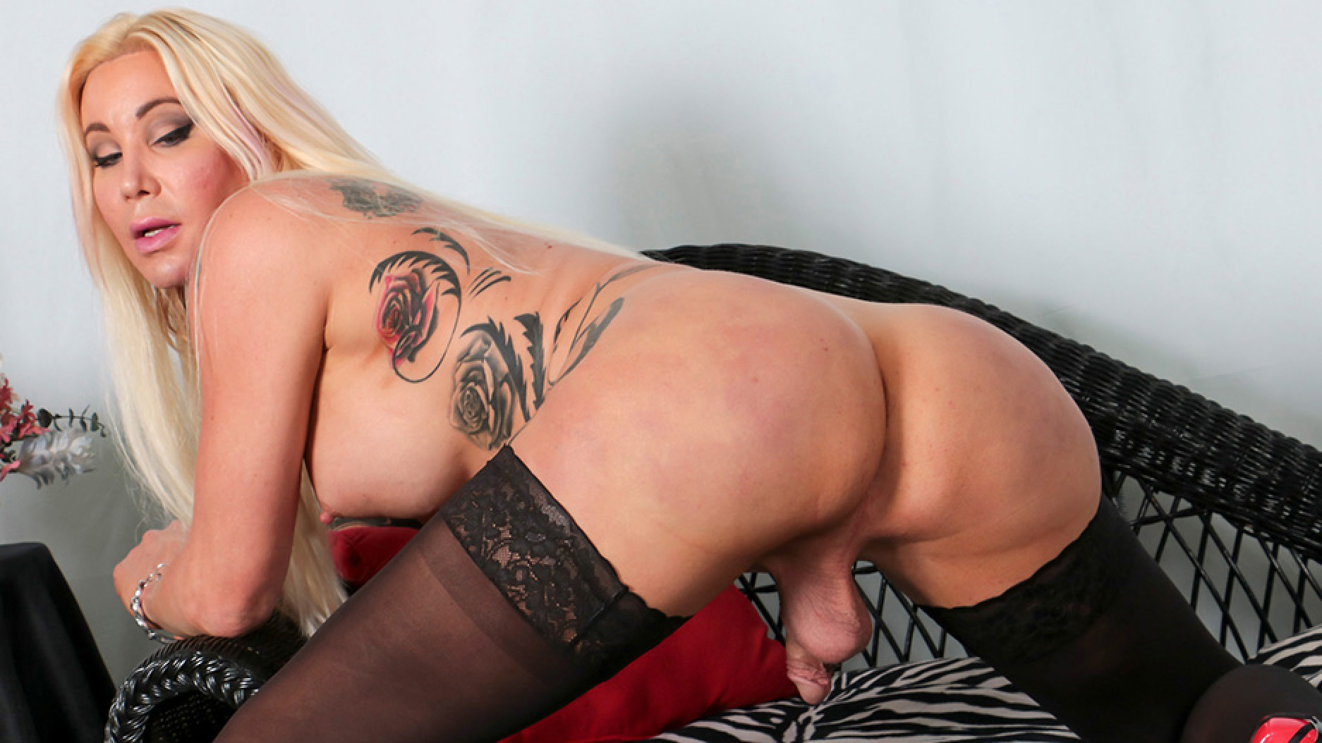 ShemalePorn Horny Blonde Josie Wails Shakes Her Booty! Added  28th Jan 2017 Shemale XXX Siterip