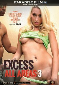 excess all areas 3 Paradise Film  [DVD.RIP XviD NYMPHO]