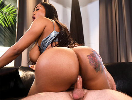 Brown Bunnies Moriah Mills Fucks the Photographer Bangbros Network May 11, 2018 Video wmv 1080p WEB-DL Multimirror