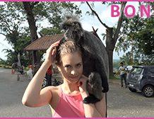 Atk Girlfriends 03/27/19 – Jill Kassidy Malaysia Part 1 Jill meets with the monkeys! 1320×680 wmv mp3 Audio  SITERIP ATKINGDOM