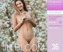 FEMJOY In Bloom feat Demi Fray release June 22, 2019  [IMAGESET 4000pix Siterip NUDEART]