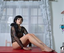 Suicidegirls Red Table  Siterip  Imageset 5200px  Multimirror