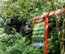 Asiansexdiary Bandung Hiking Trails Fail  Siterip Video Asian XXX