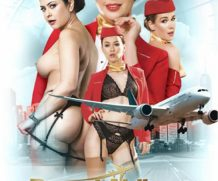 Dorcel Airlines: Indecent Flight Attendants DVD Release  [DVD.RIP. H.264 Production Year 2019]