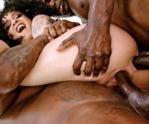 EvilAngel Black Hollys BBC Anal & DP Threesome!  HD VIDEO Siterip 1080p HD