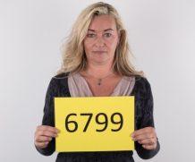 Czechcasting Czechcasting Sandra (52)  Siterip WEB-DL Multimirror 480p h.2645
