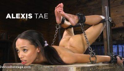 devicebondage Alexis Tae: Exploring The Dark Side of Porn feat. Alexis Tae  WEBRIP  480p h.265 Multimirror