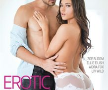 Erotic Affairs Vol. 3 DVD Release  [DVD.RIP. H.264 Production Year 2019]