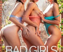 Bad Girls – Lesbian Desires DVD Release  [DVD.RIP. H.264 Production Year 2019]