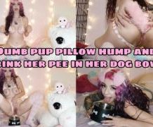 MANYVIDS PuppyGirlfriend in Dumb pup pillow hump & taste her pee  Video Clip WEB-DL 1080 mp4