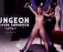 BurningAngel Joanna Angels Dungeon Furniture Emporium – Episode 3  WEB-DL FAMENETWORK 1080p]