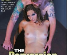 Perversion of Ava, The DVD Release  [DVD.RIP. H.264 Production Year 2019]