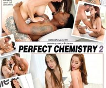 Perfect Chemistry 2 DVD Release  [DVD.RIP. H.264 Production Year 2019]
