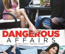 Dangerous Affairs DVD Release  [DVD.RIP. H.264 Production Year 2019]