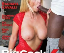 Big Cock Bully 6 DVD Release  [DVD.RIP. H.264 Production Year 2019]