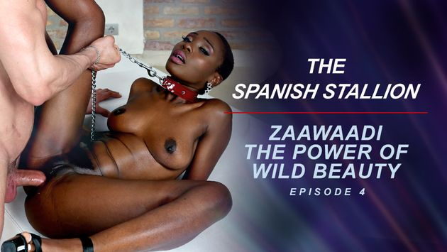 Famedigital The Spanish Stallion: Zaawaadi The Power Of Wild Beauty  - Episode 4  Siterip Video 1080p wmv Siterip RIP