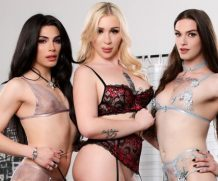 Famedigital Its A Trans Sandwich (And Im The Meat!) – Angelina Please, Ariel Demure & Jenna Creed  Siterip Video 1080p wmv