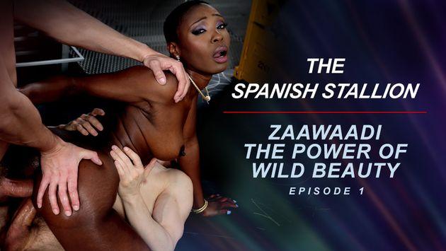Famedigital The Spanish Stallion: Zaawaadi The Power Of Wild Beauty  - Episode 1  Siterip Video 1080p wmv Siterip RIP